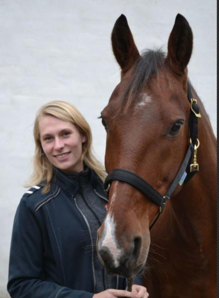 Horse Therapy v/ Amanda Wagner